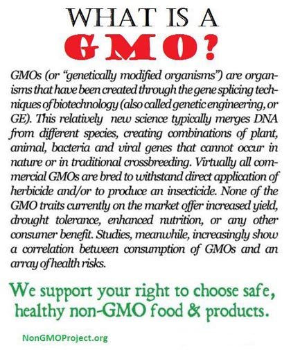 genetically modified food and traditional crossbreeding Others look at genetically modified foods as a dangerous proposition from allergic reactions to potential intestinal damage, many people wish pros of genetically modified foods here are the primary benefits of gmo foods: 1 better overall quality and taste.