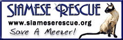Click to visit SIAMESE RESCUE
