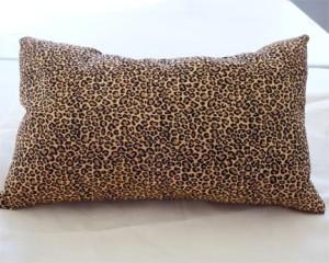 DavidX-Pillow