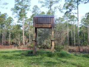 030-FL-CedarKey-BatHouse