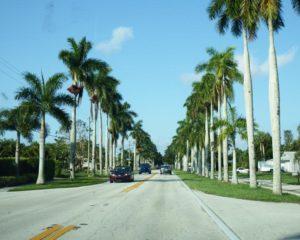 069-FL-FortMyers-Palms