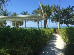 075-FL-BlueDolphin-View