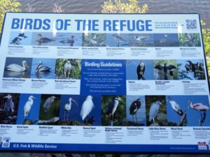 082-FL-DingDarling-Birds-Sign
